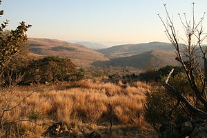 Malapa Fossil Site, Cradle of Humankind - A view of the Malapa valley, Malapa Nature Reserve, South Africa in 2012.  The Malapa site is in the valley below the hill.