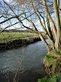 The River Blackwater - geograph.org.uk - 1219300.jpg