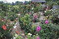 The Rose Garden (15115911971).jpg
