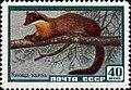 The Soviet Union 1959 CPA 2328 stamp (Yellow-Throated Marten).jpg