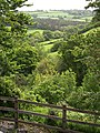 The Tamar Valley from Tutwell - geograph.org.uk - 438250.jpg