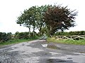 The road to Crooklands - geograph.org.uk - 564922.jpg