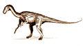 Thecodontosaurus.jpg