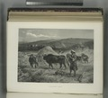 Threshing corn (NYPL b10607452-80383).tiff
