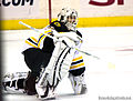 Tim Thomas Boston Bruins.jpg