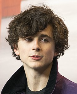 Timothée Chalamet at Berlinale 2017 (cropped 2).jpg