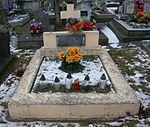 Tomb of Anna and Mieczysław Wolański at Central Cemetery in Sanok 1.jpg