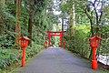 Torii - Hakone-jinja - Hakone, Japan - DSC05886.jpg
