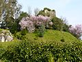 Torre de Cira - Silleda.jpg