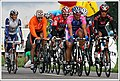 Tour De Suisse (4711787559).jpg