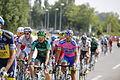 Tour de France 2013 - Étape 12 - Fougères 05.JPG