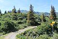 Trail to Silberenalp - panoramio (30).jpg