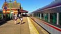 Train at Barinsdale station (24669483062).jpg