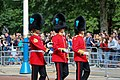 Trooping the Colour 2018 (12).jpg