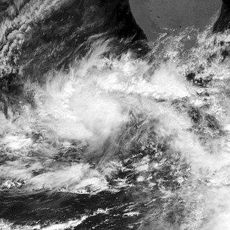 2006 North Indian Ocean cyclone season - Image: Tropical Storm 01A 2006