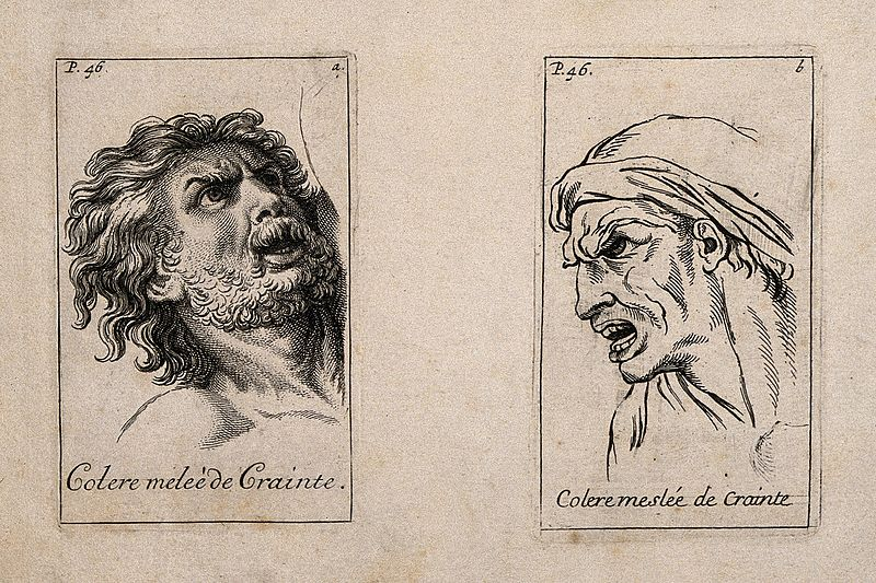 File:Two male faces expressing anger mingled with fear. Etching b Wellcome V0009400.jpg