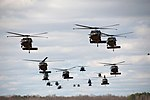 UH 60 Black Hawk helicopters from 5th Battalion, 101st Combat Aviation Brigade.jpg