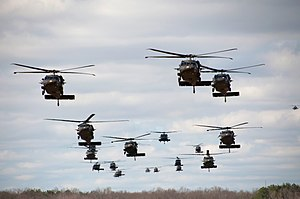 Air assault - UH-60 Black Hawk helicopters transporting troops for an air assault exercise