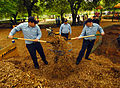 US Navy 060426-N-1924T-122 Two Sailors assigned aboard the amphibious assault ship USS Nashville (LPD 13) shovel mulch into an awaiting wheelbarrow to be laid around the playground at Northside Park in Norfolk.jpg