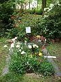 Ulrike Meinhof Grab Mai 2015 (3).JPG