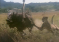 Ultime grida della savana (1975) - Cheetah hunting ostrich 1.png