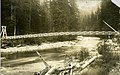 Upper suspension bridge, Capilano River, North Vancovuer, B.C. (13249328725).jpg
