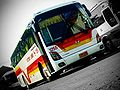 VICTORY LINER Incorporated - Hyundai Universe Space Classic - 1255.jpg
