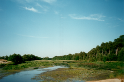 Vääna River near its mooth in Vääna-Jõesuu.