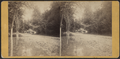 Valley Green Hotel, from Robert N. Dennis collection of stereoscopic views 2.png