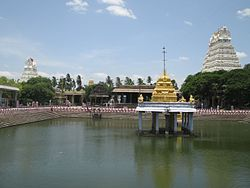 Varadaraja Perumal Temple Kanchipuram (29).jpg