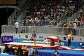Vault 6 2015 Pan Am Games.jpg