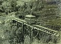 Vauxhall railbus on the two foot gauge Lake Margaret tram in South Western Tasmania, photo by LB Manny (cropped, 01).jpg