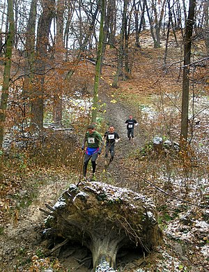 Trail running - A hill-running race in Prague