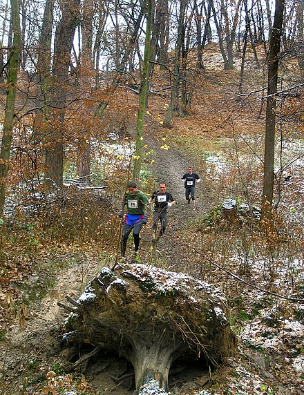 A hill-running race in Prague Velka kunraticka 2nd hill, Prague.jpg