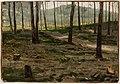 Victor Westerholm - Landscape from Rath - A II 1094 - Finnish National Gallery.jpg