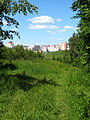 View to Sucharava district from the grove near former Michalova village in Minsk - panoramio.jpg