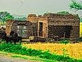 Village house in Punjab, Pakistan.jpg
