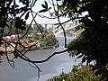 Vista para o Monte do Castelo (área do Castelo de Gaia).jpg