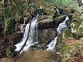 Vodopády Kotmanová - panoramio.jpg