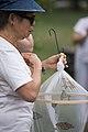 Volunteers with Monarch Teacher Network release butterflies in Arlington National Cemetery (28872584375).jpg
