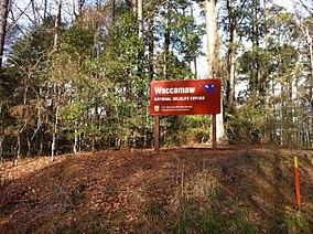 Waccamaw National Wildlife Refuge.jpg