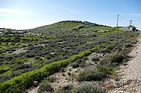 Wadi-Makukh-Mitzpe-Dani-502.jpg
