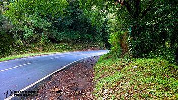 Way to Peak of South India.jpg