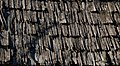 Weathered wood shingles.jpg