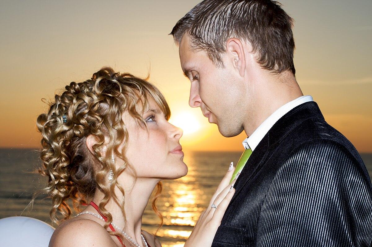 Wedding Insurance Comparison: Wiktionnaire