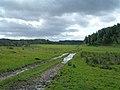 Wet Farmland - geograph.org.uk - 519087.jpg