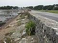 Whitecliff, sea wall - geograph.org.uk - 1495116.jpg