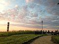 Wieża widokowa w Ujściu5.jpg
