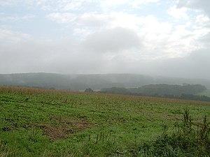 Angrivarii - Upland meadow in Wiehengebirge, part of ancient Engern