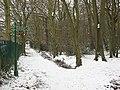Winter in Elmstead Woods (2) - geograph.org.uk - 1655287.jpg
